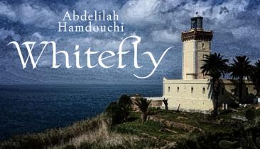 Whitefly_Header_Final-hi res